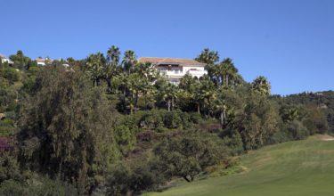 La Quinta de los Olivos